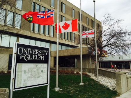 flags in front of the university centre